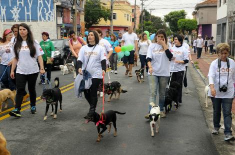 CCZ PROMOVE CURSO PARA VOLUNTÁRIOS DA CAUSA ANIMAL